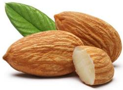 10 Health Benefits of Almonds | Vijayrampatrika.com